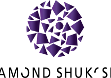ds_logo2015_02